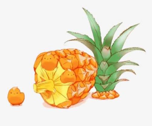 菠蘿蜜貸款