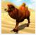 野駱駝的賽車模擬器