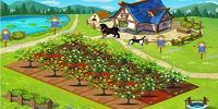 有哪些养殖赚钱app